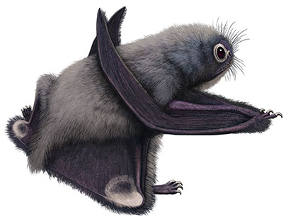 Pteros.com, the Online Pterosaur Encyclopedia