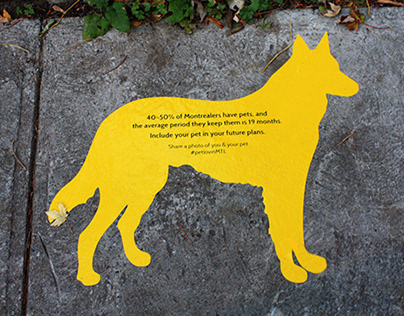 Pet Awareness - Guerilla Campaign