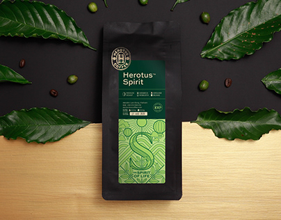 Herotus Coffee Brand Identity & Packaging