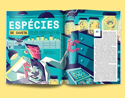 Super Interessante - Espécies de Gaveta