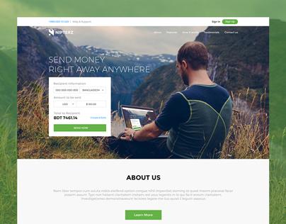 NIPTERZ Website Design