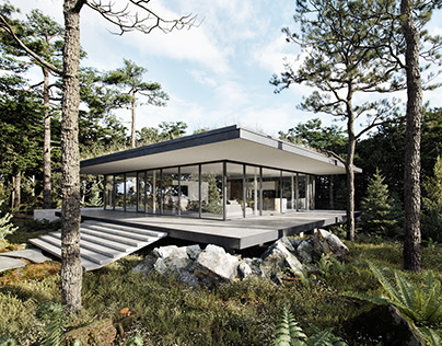 Architect House in a Pine Forest
