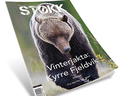 STØKK: Magazine