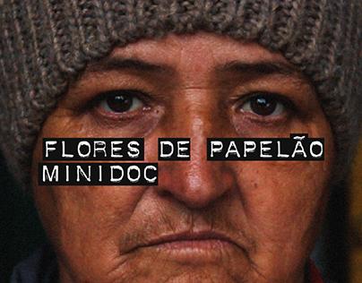 Edição de vídeos - Minidoc Flores de Papelão