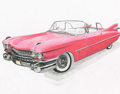 Colored Pencil Illustrations