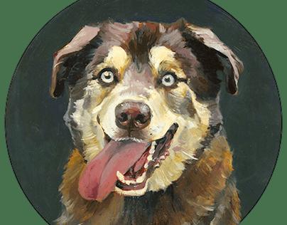 Pet Portraits II