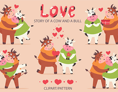 A love story of a cow and a bull