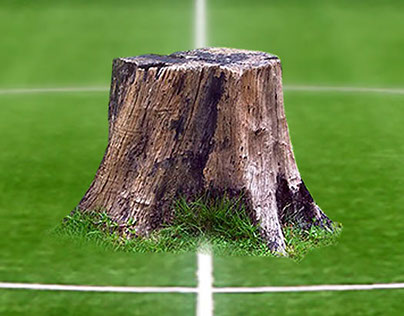 WWF - Fútbol contra la deforestación