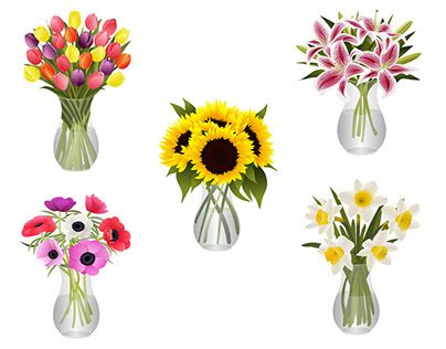 Bouquets of Flowers in Glass Vases Vector Illustrations