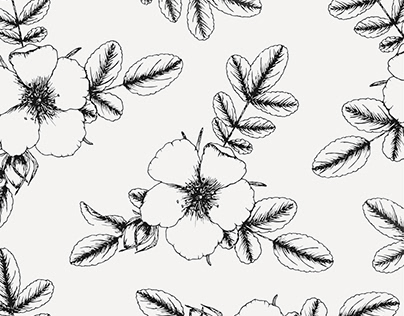 Botanical Illustrations Collection