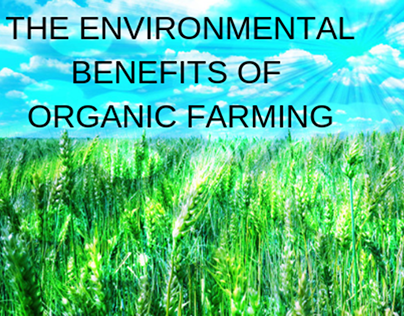 The Environmental Benefits of Organic Farming
