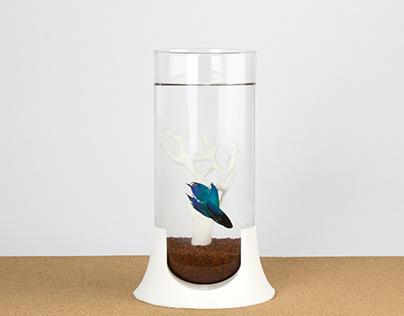 Aquarium forSiamese fighting fish - 3D printing (2017)