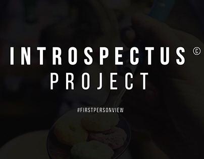 Introspectus project