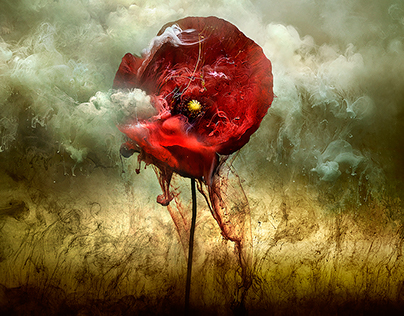 Giles Revell + War Poppies