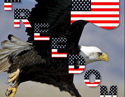 American Flag/USA Flag/Eagle Flag