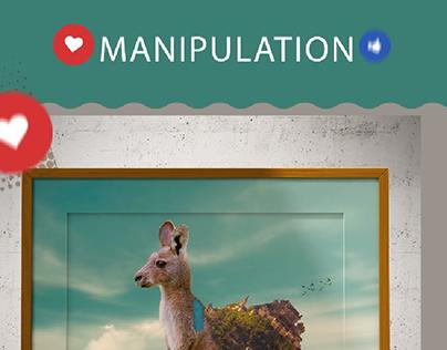 manipulation project