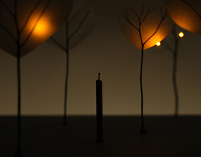 Fireflies | Stop Motion Animation