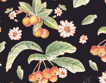 Daisies Wildflowers & Golden Cherry _watercolor pattern