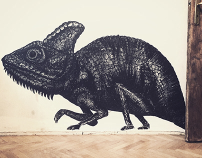 Chameleon on the wall