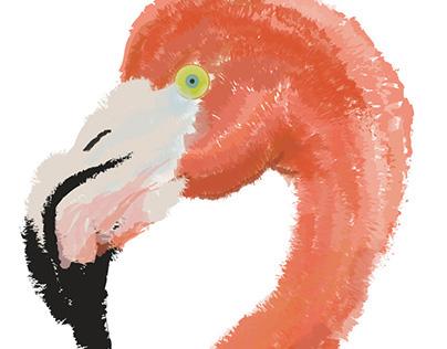 Illustration (digital)