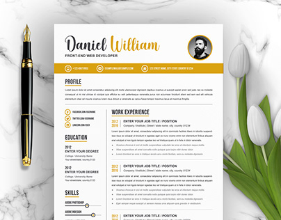 Professional Resume Template, Clean Resume