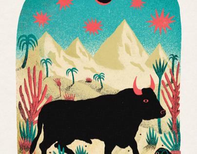 Bull in the desert