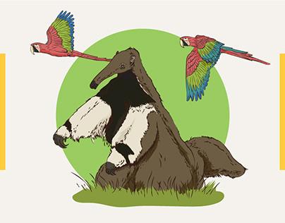 Ecoparque_ Ilustraciones