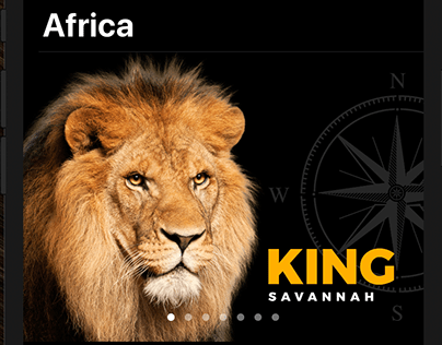 "Application iOS ""Africa"""