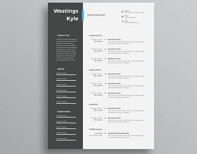 Free Professional resume template (CV) in word and PS
