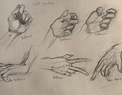 drawing studies, zoo animals, anatomy and reference