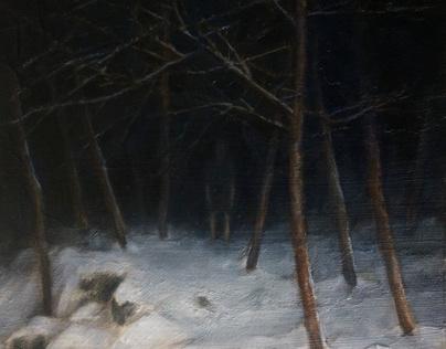 Nighttime Woods