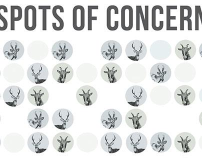 Spots of Concern - Film