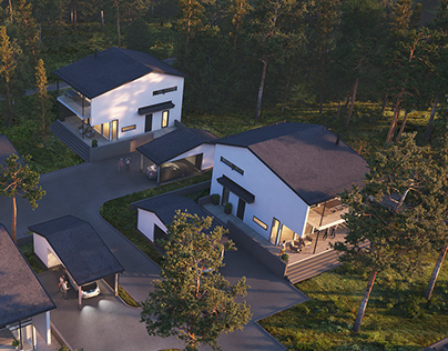 Finnish housing