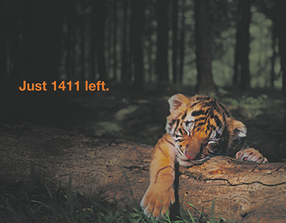 Save Our Tigers Print Campaign