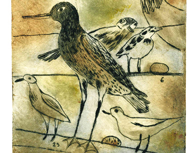 BIRDS - Four colorful prints - Drypoint