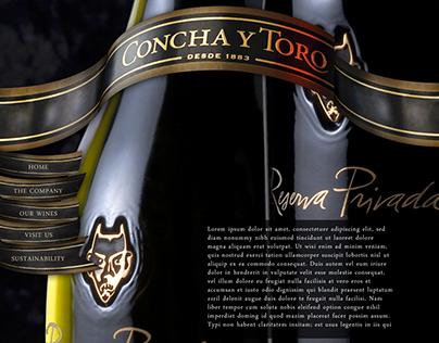 Concha y Toro - Web Design