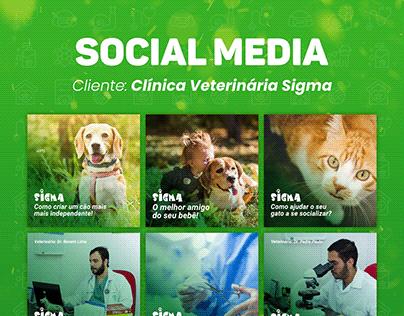 Social Media: Clínica Veterinária Sigma