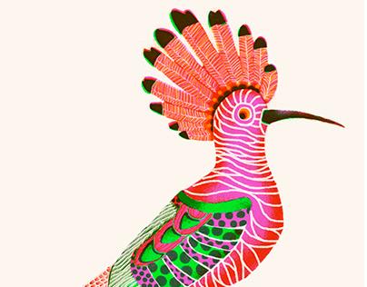 Animals // Digital Illustration