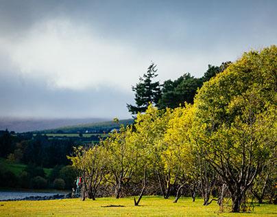 Vartry Reservoir - Ireland co. Wicklow