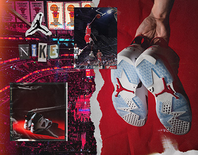 "Nike Air Jordan Retro ""Carmine"""