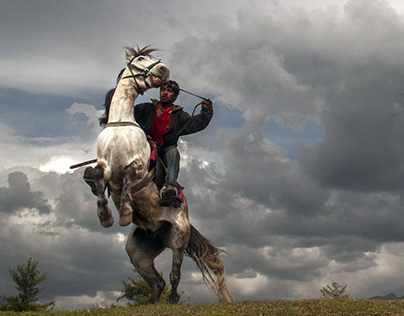 Himalaya's Horses