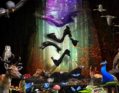 """(Dreams of) Evolution"", version 2, digital collage"