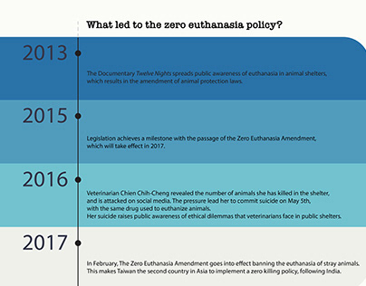 Behind Stray Animals Zero Euthanasia Policy