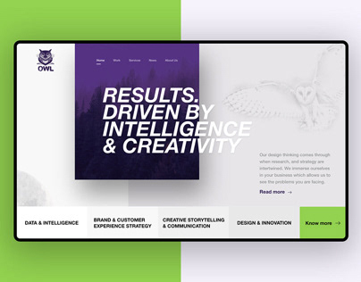 UI/UX Design for OWL Website