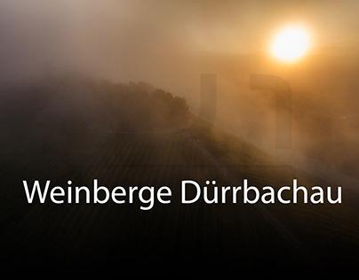 Luftbilder Weinberge Dürrbachau