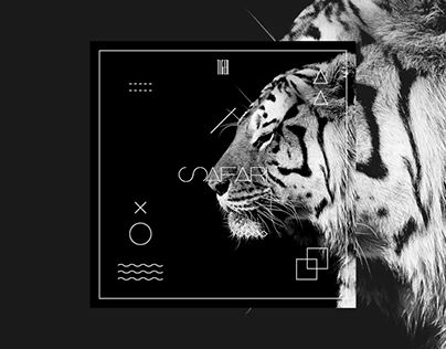 SAFARI_ Cover Design