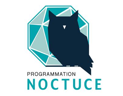 Programmation Noctuce