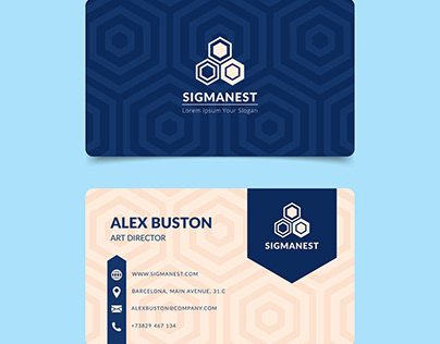 White & Blue Visiting Card Template