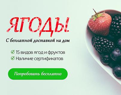 Berries banner