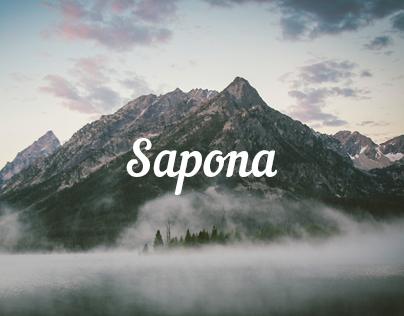 Sapona One Page Theme
